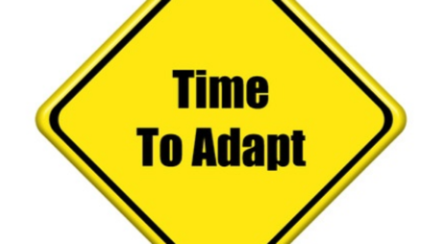 Make Business Adaptability Your Key to Success