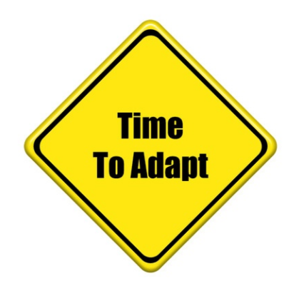 Make Business Adaptability Skills Your Key to Success