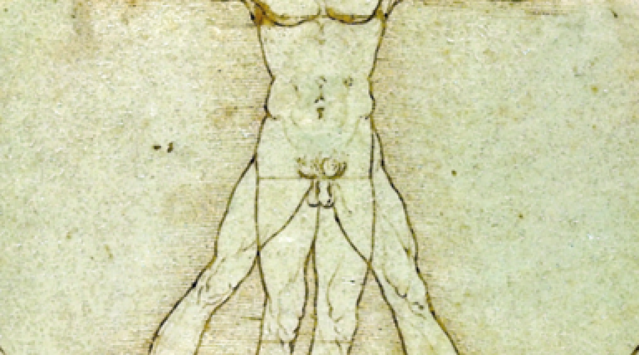 Learning Activities … 7 Lessons From Da Vinci