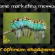 11 Steps to Media Framing Messages for Optimum Engagement