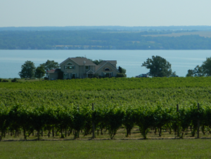 best Finger Lakes Wineries