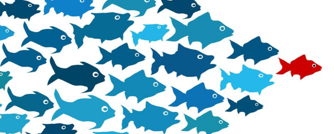 Leadership Characteristics and Mistakes That Destroy Your Influence Skills